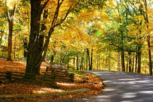 Indiana Autumn Road Trip