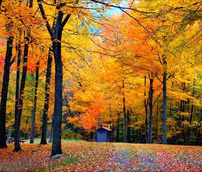 New Hampshire Vermont Fall Foliage Trip