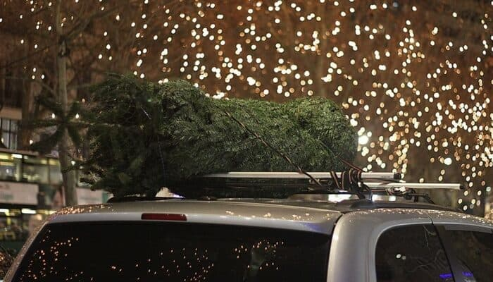 Tie Christmas tree to Car