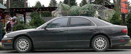 tie christmas tree on car
