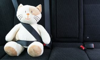 How Do Seat Belts Work? (And Do You Really Need to Wear One?)