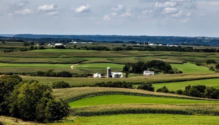 Iowa Fields
